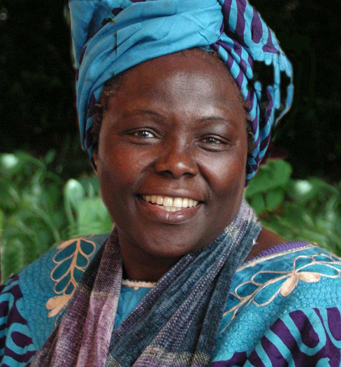 The Life and Leadership of Wangari Maathai